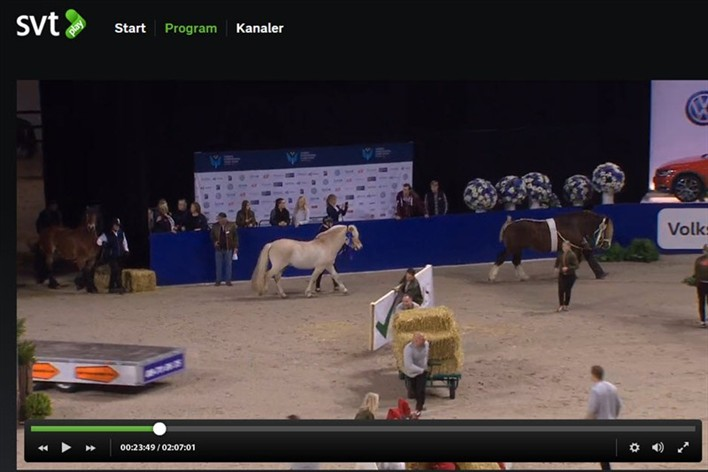 SVT play Sweden international Horse Show 2015