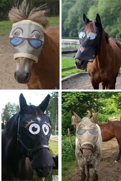 flughuva häst med ögon